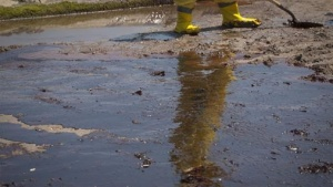 A clean-up worker is reflected in a pool of beached oil from the Deepwater Horizon Oil Spill in Port Fourchon, Louisiana May 24, 2010. REUTERS/Lee Celano