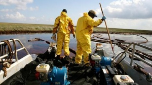 Gardner Workers use pumps to suck up pockets of oil in Bay Barataria near Grand Isle, Louisiana June 13, 2010. REUTERS/Sean Gardner
