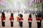 A marching band of guardsmen parade along The Mall before the wedding of Prince William and Kate Middleton in central London April 29, 2011. REUTERS/Dylan Martinez