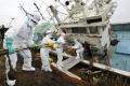 Fukushima Impact
