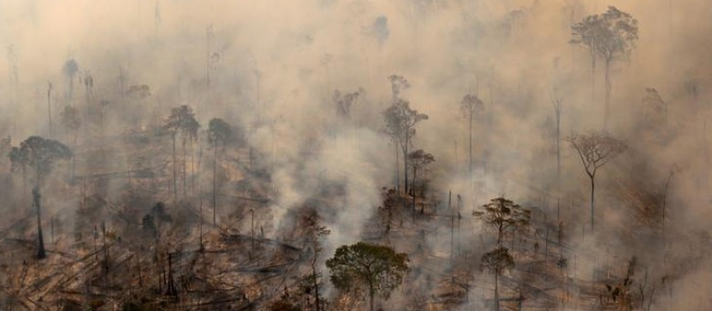 Battling deforestation in the Amazon