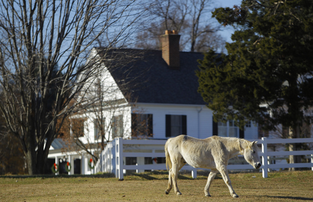HORSE COUNTRY: An estate in the Maryland suburbs. The earnings of the Washington-area elite - lawyers, lobbyists, entrepreneurs have risen sharply. REUTERS/Gary Cameron