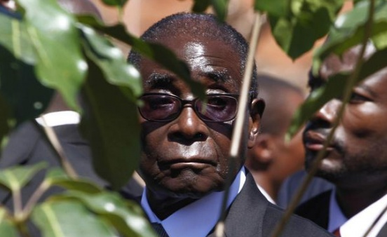 African leaders wanted Mugabe gone