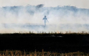A farmer burns paddy stubble in a field on the outskirts of Ahmedabad, India November 15, 2017. REUTERS/Amit Dave/Files