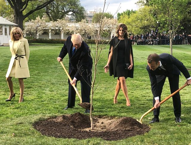 FILE PHOTO - U.S. President Donald Trump and French President Emmanuel Macron shovel dirt onto a freshly planted oak tree as Brigitte Macron and first lady Melania Trump watch during a tree planting ceremony on the South Lawn of the White House in Washington, U.S., April 23, 2018.   REUTERS/Steve Holland