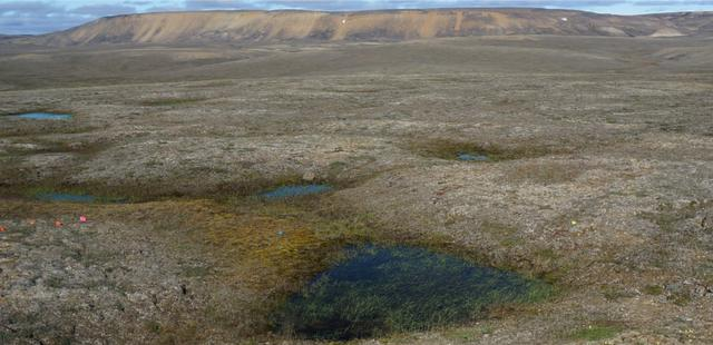 General view of a landscape of partially thawed Arctic permafrost near Mould Bay, Canada, in this handout photo released June 18, 2019. The image was captured in 2016 by researchers from the University of Alaska Fairbanks who were amazed to find the permafrost thawing 70 years faster than models predicted. Louise Farquharson/Handout via REUTERS