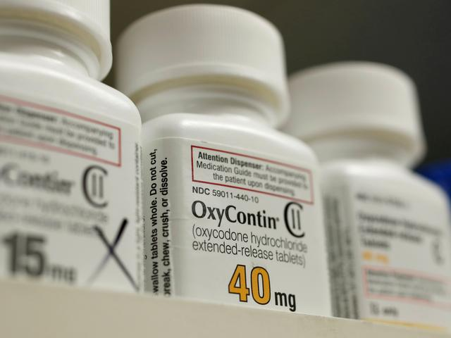 FILE PHOTO: Bottles of prescription painkiller OxyContin made by Purdue Pharma LP sit on a shelf at a local pharmacy in Provo, Utah, U.S. April 25, 2017.   REUTERS/George Frey/File Photo
