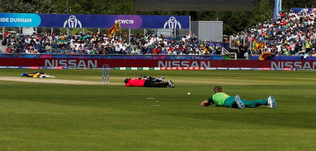 Cricket - ICC Cricket World Cup - Sri Lanka v South Africa -  Emirates Riverside, Chester-Le-Street, Britain - June 28, 2019   The umpire, Sri Lanka and South Africa players lie on the ground to avoid bees   Action Images via Reuters/Lee Smith