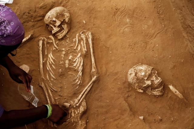 FILE PHOTO: An American archaeology student unearths a skeleton during excavation works at the first-ever Philistine cemetery at Ashkelon National Park in southern Israel June 28, 2016. REUTERS/Amir Cohen/File Photo