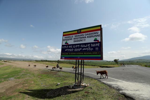 "Donkeys walk past a billboard that reads ""Welcome to Sidama National Regional State"" on the outskirt of Hawassa, Ethiopia July 17, 2019. REUTERS/Tiksa Negeri"