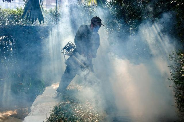 Foto de archivo. Un trabajador rocía insecticida para mosquitos en una aldea de Bangkok, Tailandia. 12 de diciembre de 2017. REUTERS/Athit Perawongmetha.
