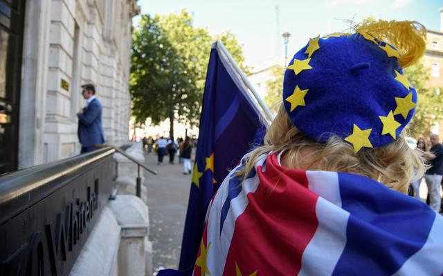 FILE PHOTO: An anti-Brexit protester is seen outside the Cabinet Office in London, Britain July 29, 2019.  REUTERS/Toby Melville