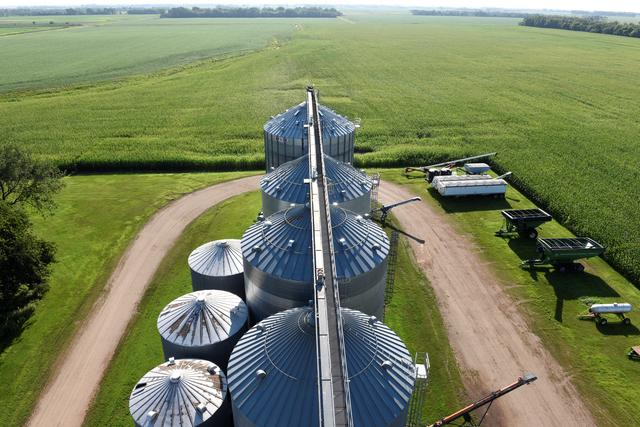 Grain storage bins in the foreground are surrounded by corn fields on Paul and Vanessa's farm near Colfax, North Dakota, U.S., August 6, 2019.  REUTERS/Dan Koeck