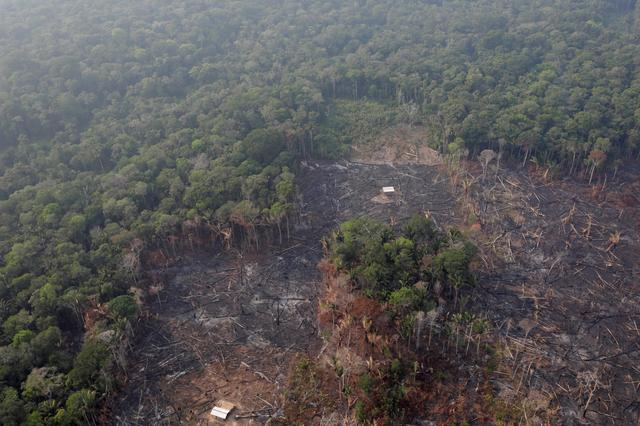FILE PHOTO: An aerial view of a deforested plot of the Amazon near Humaita, Amazonas State, Brazil August 22, 2019. REUTERS/Ueslei Marcelino