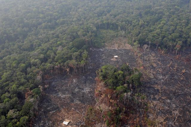 FILE PHOTO: An aerial view of a deforested plot of the Amazon near Humaita, Amazonas State, Brazil August 22, 2019/File Photo