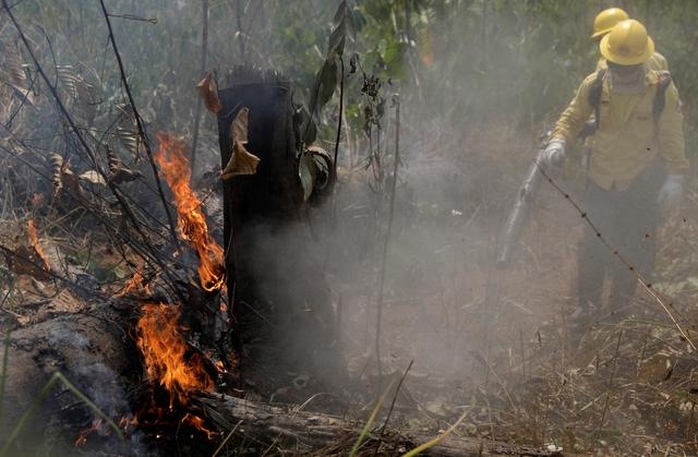 Firefighters extinguish a fire in Amazon jungle in Porto Velho, Brazil August 25, 2019. REUTERS/Ricardo Moraes