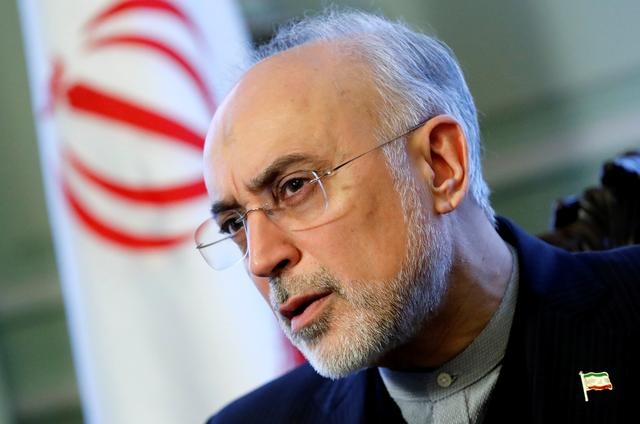 FILE PHOTO: Iran's nuclear chief Ali Akbar Salehi speaks to Reuters during an interview in Brussels, Belgium November 27, 2018.  REUTERS/Yves Herman