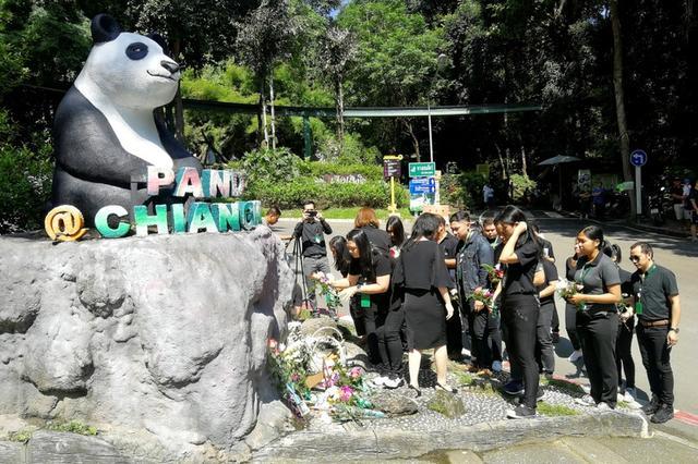 Trabajadores de zoológico ponen flores en una estatua de Panda, días después de que el oso de 19 años Chuang Chuang murió en el zoológico de Chiang Mai, en Tailandia. 18 de septiembre de 2019. Dailynews/vía REUTERS. ATENCIÓN EDITORES - ESTA IMAGEN HA SIDO ENTREGADA POR UN TERCERO