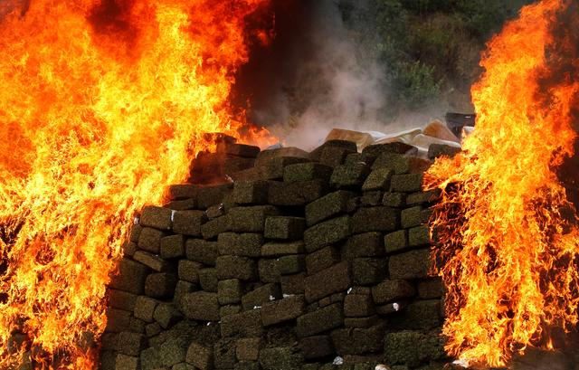 FILE PHOTO: A pile of marijuana is being incinerated at the 28th Infantry Batallion in Tijuana, Mexico September 26, 2019. REUTERS/Jorge Duenes