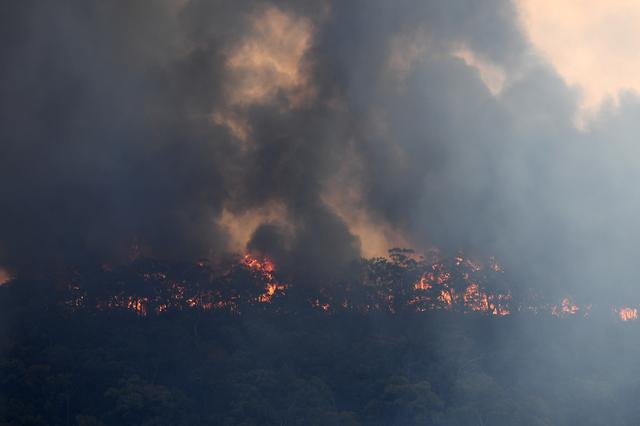 The Gospers Mountain fire is seen burning in bushland near Colo Heights, north west of Sydney, Australia, November 13, 2019. AAP Image/Dan Himbrechts/via REUTERS