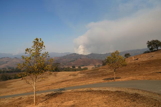 FILE PHOTO: A column of smoke from the Kincade Fire is seen at a distance in Calistoga, California, U.S., October 28, 2019. REUTERS/Stephen Lam/File Photo