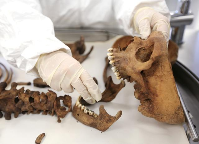 FILE PHOTO: A forensic doctor examines the bones of an unidentified victim which is analyzed in the lab of the Attorney-General's office in Bogota, Colombia, July 21, 2015. REUTERS/Jose Miguel Gomez/File Photo