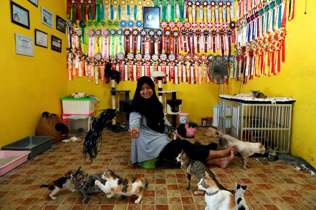 "Dita Agusta, 45, owner of a cat shelter called ""Rumah Kucing Parung"", plays with her cats in Bogor, West Java province, Indonesia December 23, 2019. REUTERS/Willy Kurniawan"