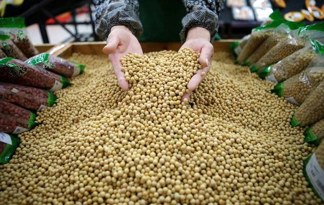 FILE PHOTO: An employee picks out bad beans from a pile of soybeans at a supermarket in Wuhan, Hubei province April 14, 2014. REUTERS/Stringer/File Photo