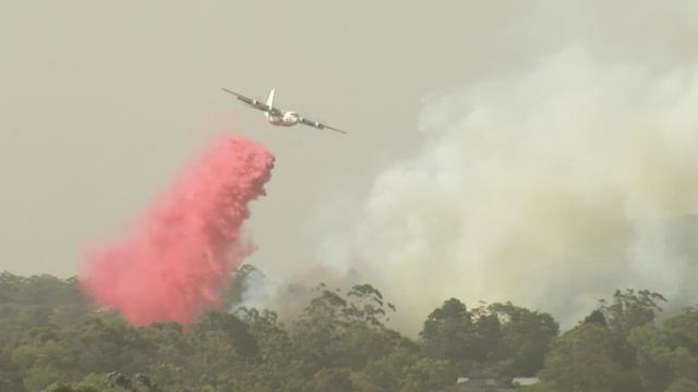 A plane releases fire retardant over forest during bushfires in South Turramurra, New South Wales, Australia November 12, 2019 in this screen grab obtained from a social media video. Video taken November 12,2019. IAIN BREW via REUTERS