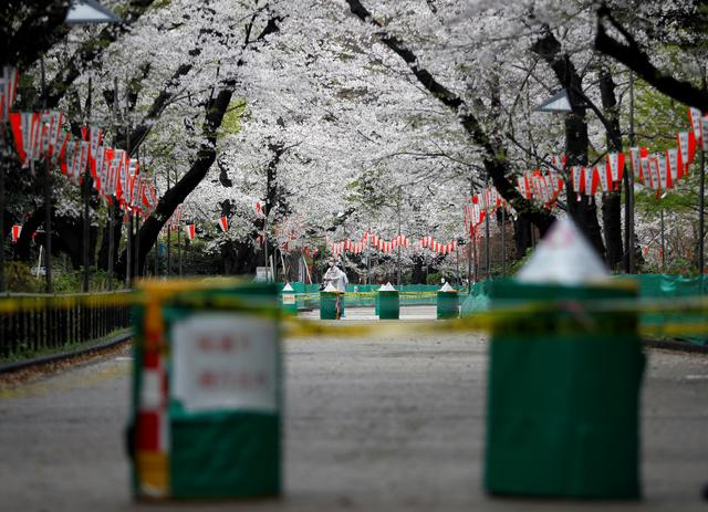 A man wearing a protective face mask, following an outbreak of the coronavirus disease (COVID-19), is seen through a closed cherry blossom viewing spot during the first weekend after Tokyo Governor Yuriko Koike (not pictured) urged Tokyo residents to stay indoors in a bid to keep the coronavirus disease from spreading, at Ueno park in Tokyo, Japan March 28, 2020. REUTERS/Issei Kato