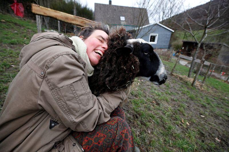 Feeling lonely in lockdown? Try hugging a sheep
