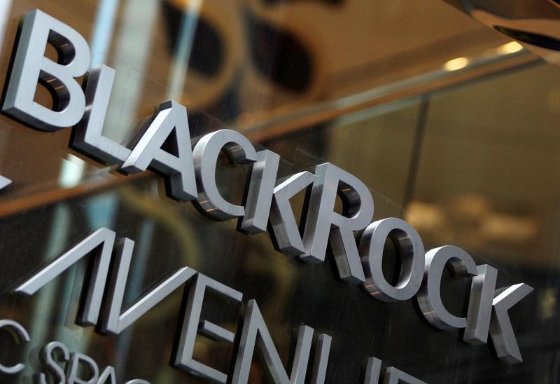 BlackRock ups focus on 'natural capital' ahead of AGM season