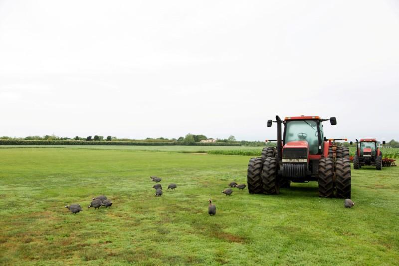 U.S. defends minority farmer debt relief despite legal fight