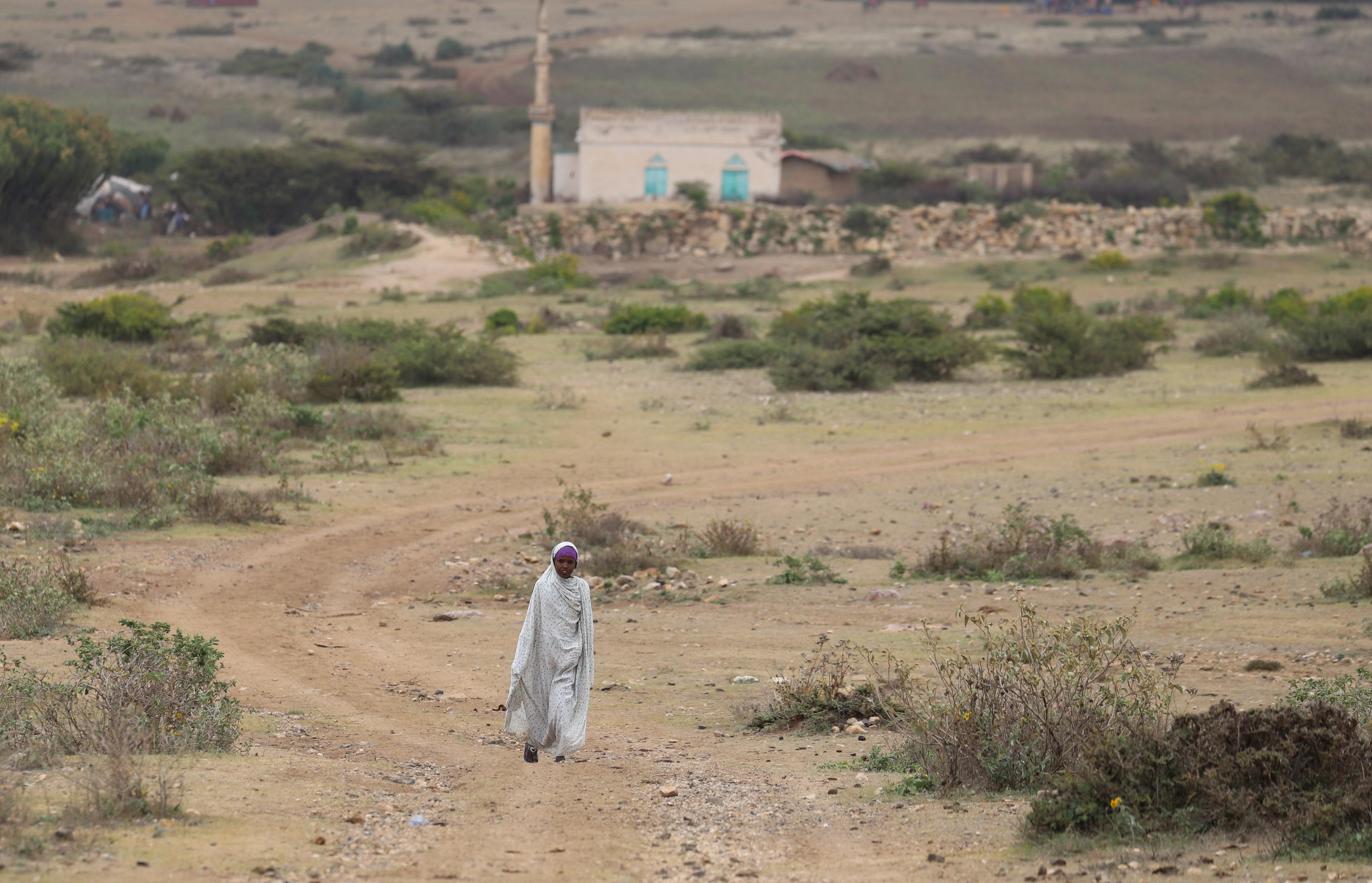 Ethiopia's Somali region says town attacked, amid new local flare ups
